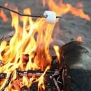 Campfire Starter Tips